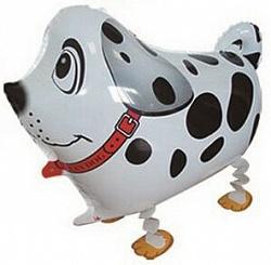 Шар (24''/61 см) Ходячая Фигура, Собака далматин, Белый, 1 шт